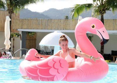 Flamingo The Phuket App Tour Guide Thailand Kathu Connection Slip & Fly Phuket 12